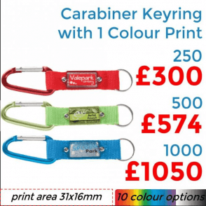 Carabiner Keyring With Full Colour Print