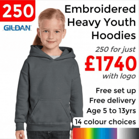 250 x Embroidered Heavy Blend youth hooded sweatshirt £1740