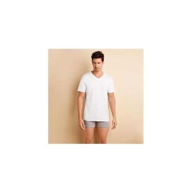 Gildan platinum men's underwear v-neck (4 units per pack)
