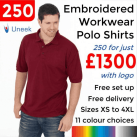 250 x Embroidered Essential Poloshirt £1300