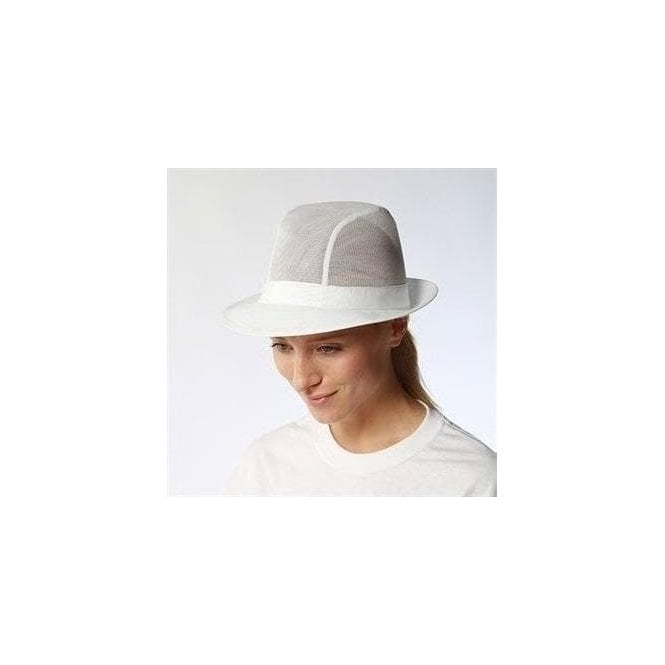 Dennys Unisex trilby with no hat band (DG39)